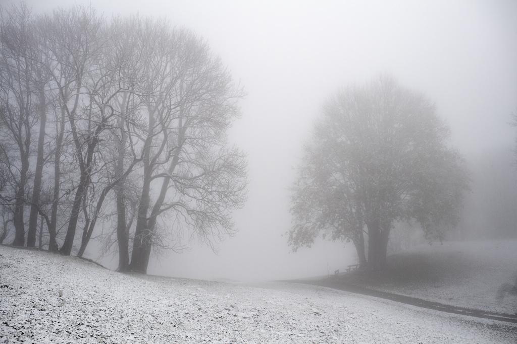 Shtatori sjell borën e parë në Gjermani