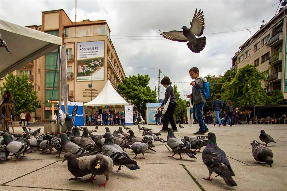 Kosovë  2 562 raste aktive me Covid dhe 2 267 të shëruar