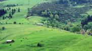Malet_e_Rugovës_Kosovë.jpg